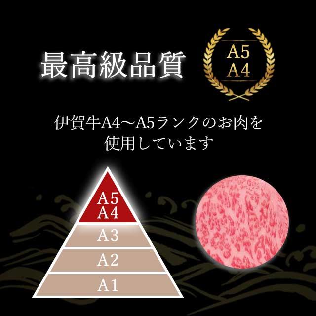 A4~A5使用・伊賀忍者ビーフ